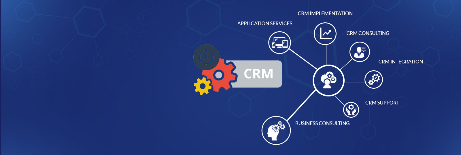 CRM Development Company